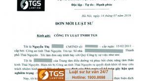 Hành trình đến với Hãng luật TGS của bị can người Thái Nguyên