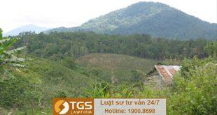 Lệ phí phải nộp khi xin cấp Giấy chứng nhận quyền sử dụng đất rừng