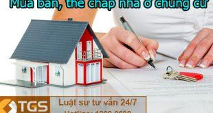 Luật hình sự - Mua bán, thế chấp nhà ở chung cư