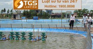 xin giấy phép khai hoang nuôi trồng thủy sản