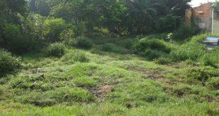 chuyển mục đích sử dụng đất sang nuôi trồng thủy sản