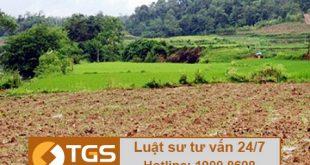 giải quyết tranh chấp đất đai tại Hòa Bình