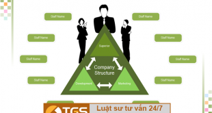 cơ cấu tổ chức doanh nghiệp