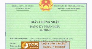 Thủ tục xin cấp lại giấy chứng nhận đăng ký nhãn hiệu
