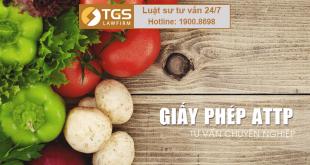 dịch vụ xin cấp giấy chứng nhận vệ sinh an toàn thực phẩm