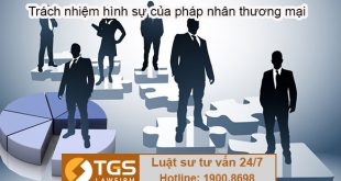 Trách nhiệm hình sự của pháp nhân thương mại