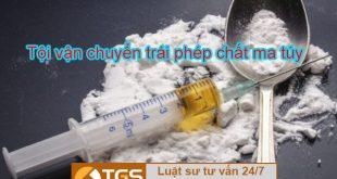 Điều 250 Bộ luật hình sự 2015 về Tội vận chuyển trái phép chất ma túy