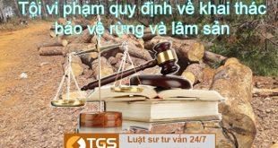 Điều 232 Bộ luật Hình sự 2015