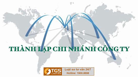 công ty có vốn đầu tư nước ngoài có thành lập được chi nhánh, văn phòng đại diện